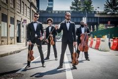 male_string_quartet