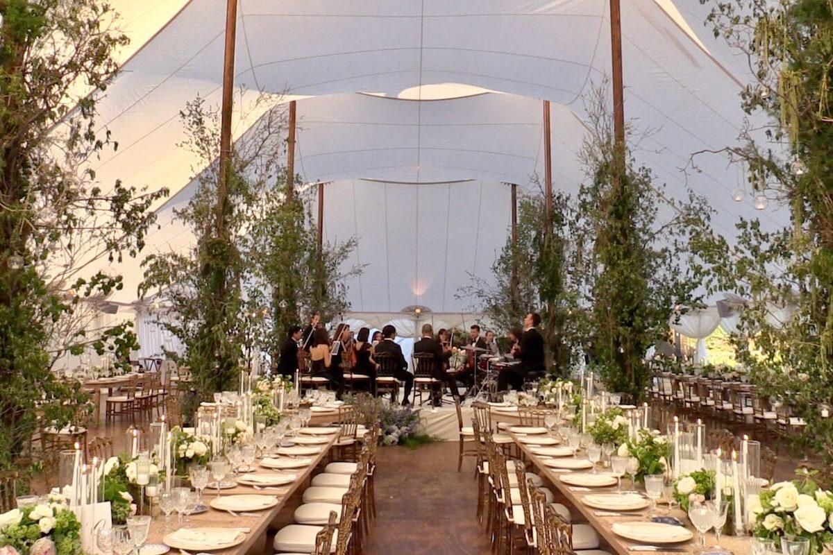 wedding orchestra