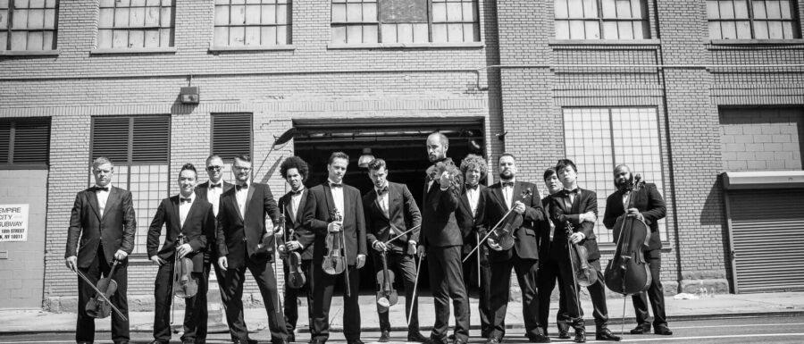 male violin orchestra